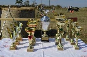 Záprahová súťaž - Fogathajtó verseny