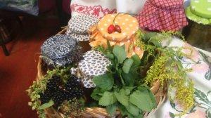 Farby jesene 1. miesto v aranžovaní - Az ősz színei - Hidasnémeti
